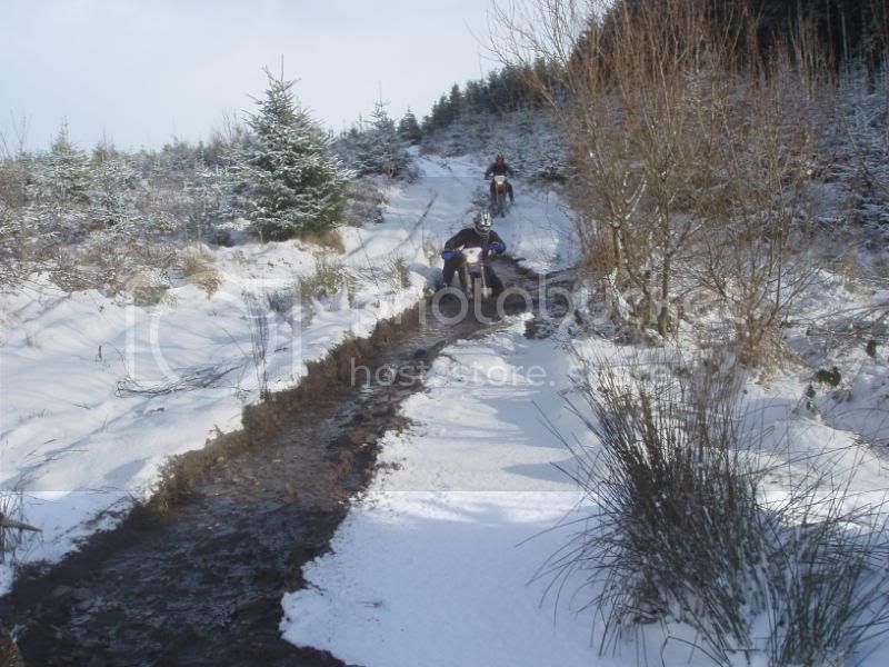 Pigging Snow P1310036