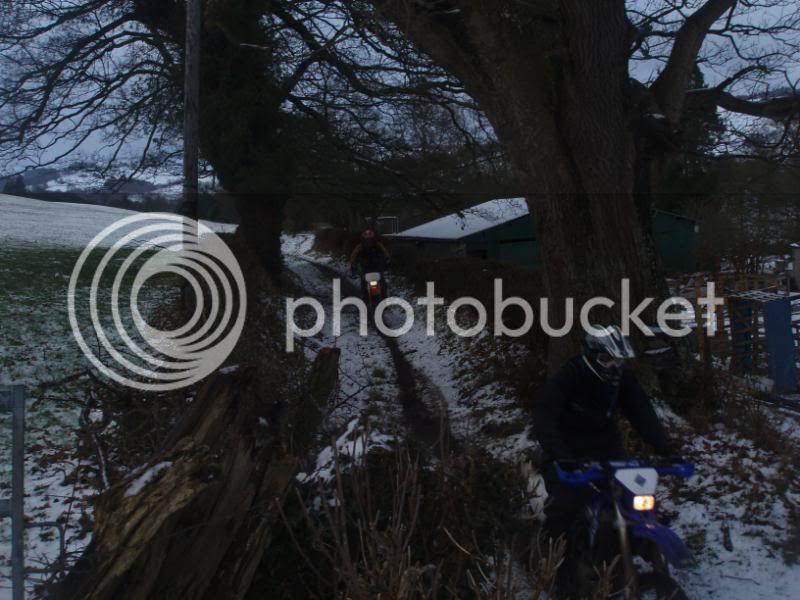 Pigging Snow P1310042