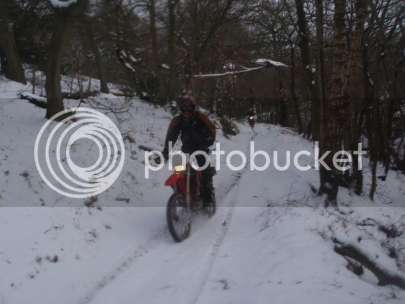 Pigging Snow P1310043