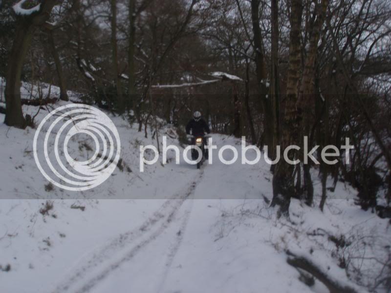 Pigging Snow P1310044