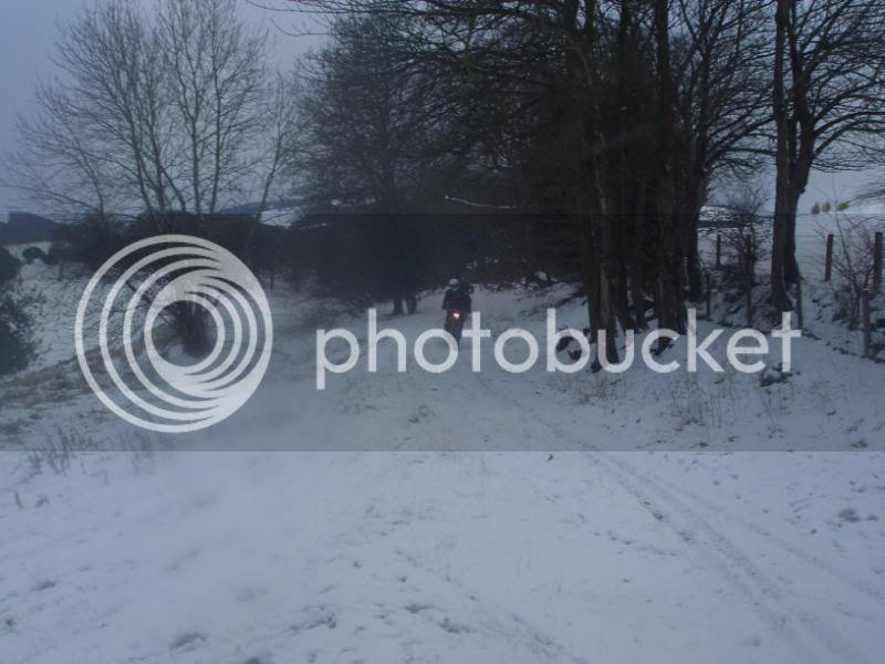 Pigging Snow P1310045