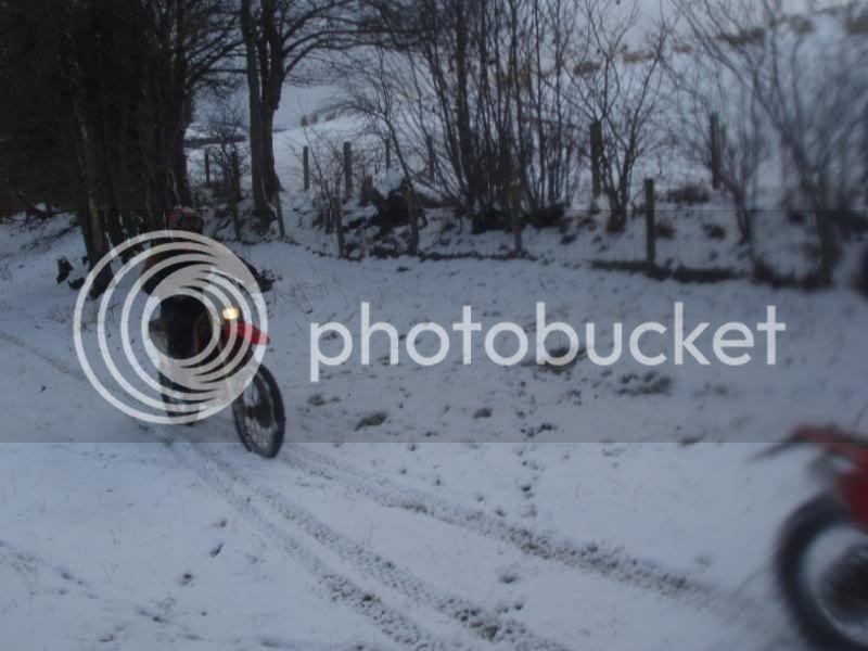 Pigging Snow P1310046