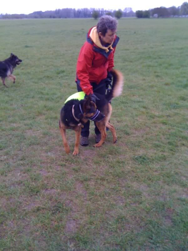 Rocky 6yr old homed Photo08-04-2012112214