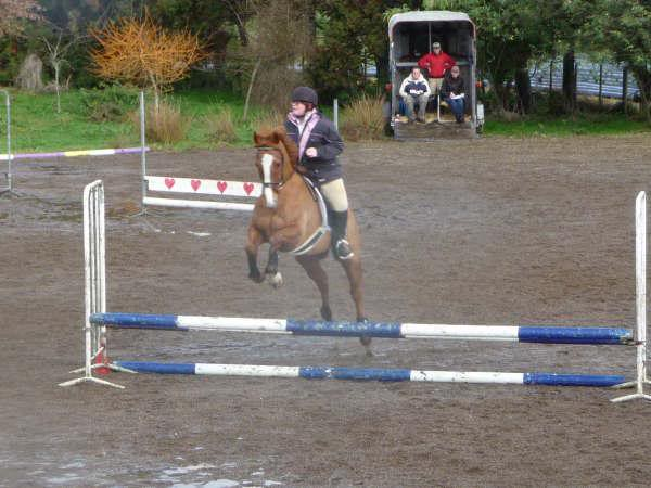 Sunday's Showjumping! GetAttachment