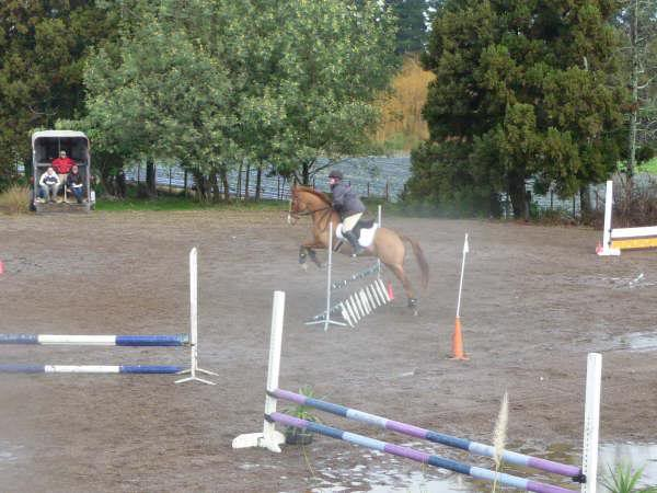 Sunday's Showjumping! GetAttachment2