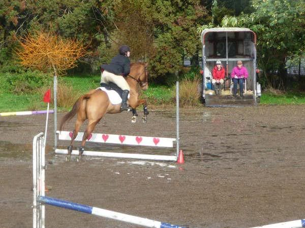 Sunday's Showjumping! GetAttachment3