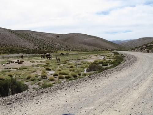 Ruta 40 Norte, algo de Bolivia y Chile 129