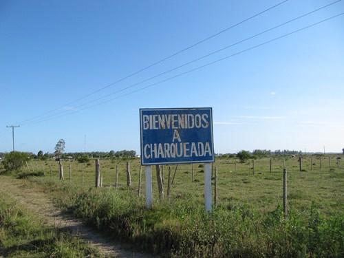 Uruguay Noviembre 2012 - Página 2 IMG_2257_zps0b88c70b