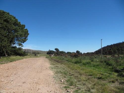 Viaje a Sierra de la Ventana.2014 IMG_8991_zps2cdb8c64