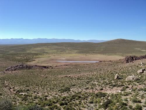 Ruta 40 Norte, algo de Bolivia y Chile DSC01272