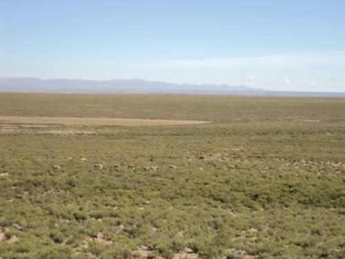 Ruta 40 Norte, algo de Bolivia y Chile DSC01277
