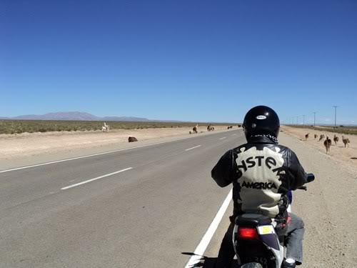 Ruta 40 Norte, algo de Bolivia y Chile DSC01348