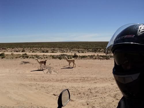Ruta 40 Norte, algo de Bolivia y Chile DSC01350