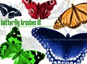 Tổng hợp Brush ButterflyBrushesIII
