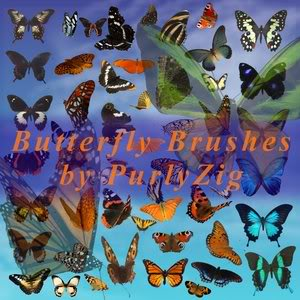 Tổng hợp Brush Butterfly_Brush_Set_by_PurlyZig