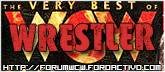 WCW Wrestlers