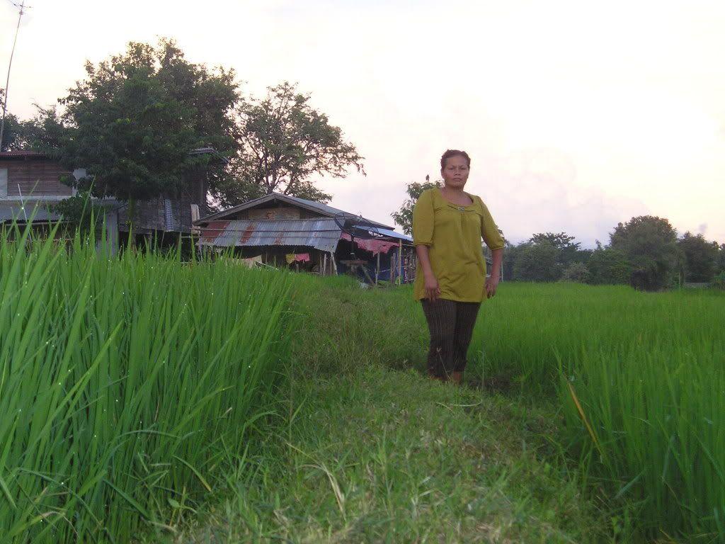 அழகான நெல் வயல்கள்2 - Page 7 Mekong018