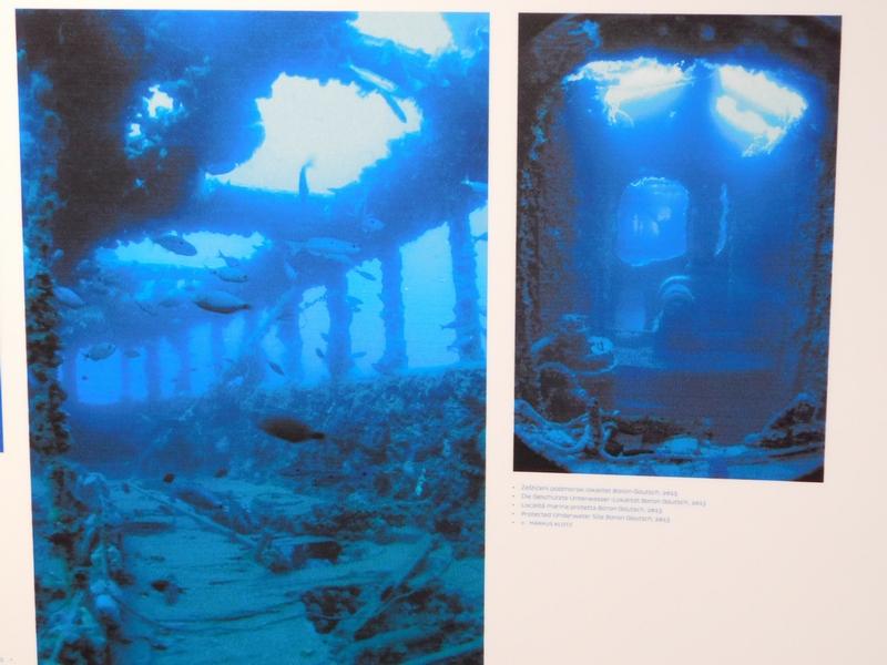 Pomorske nesreće - Page 3 DSCN0547