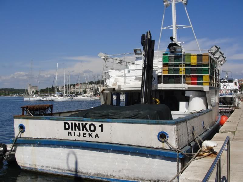 Ribarice DSC01875