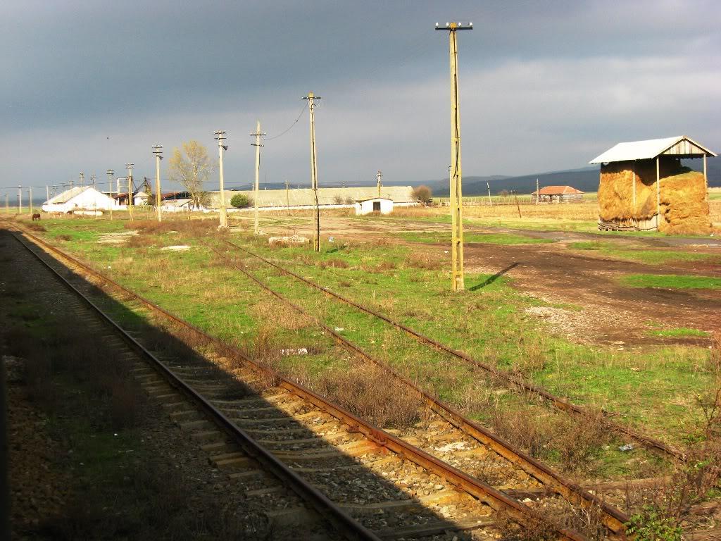 608 : Letcani - Dangeni - Dorohoi IMG_7287