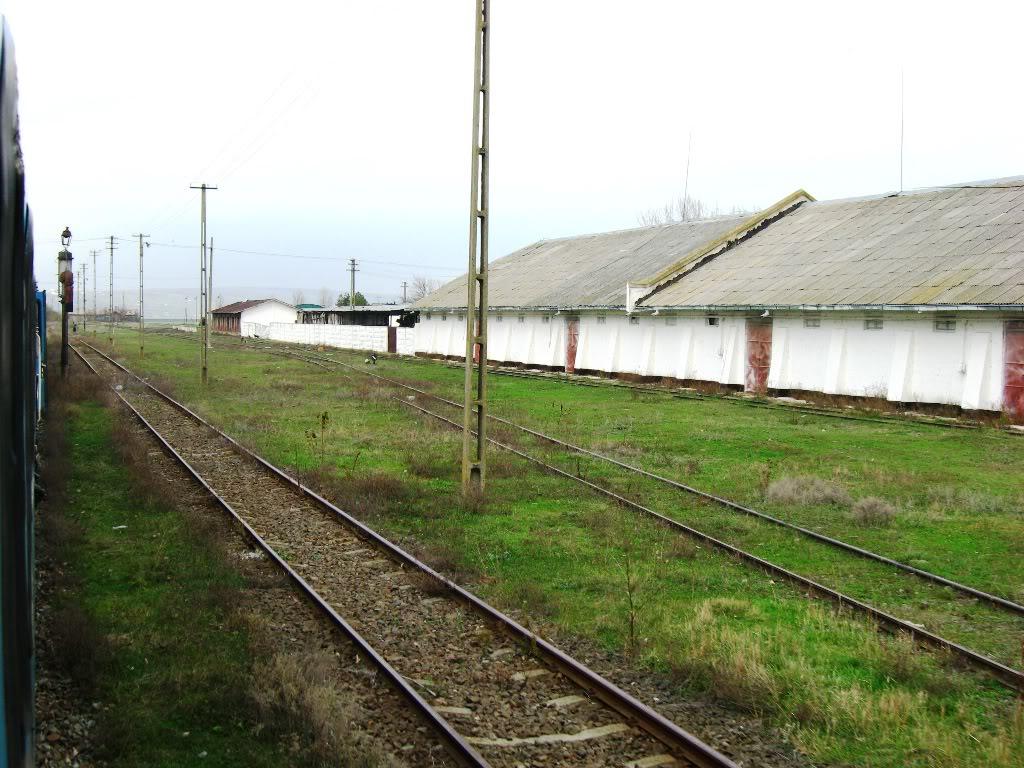 608 : Letcani - Dangeni - Dorohoi IMG_7295