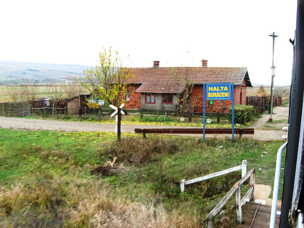 608 : Letcani - Dangeni - Dorohoi - Pagina 2 IMG_7326