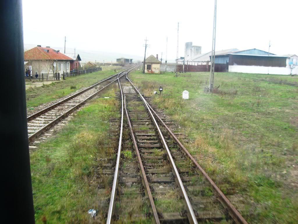 608 : Letcani - Dangeni - Dorohoi - Pagina 2 IMG_7363