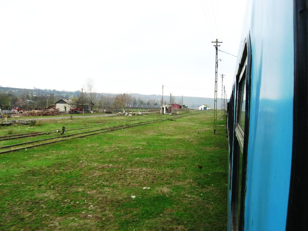 608 : Letcani - Dangeni - Dorohoi - Pagina 2 IMG_7366