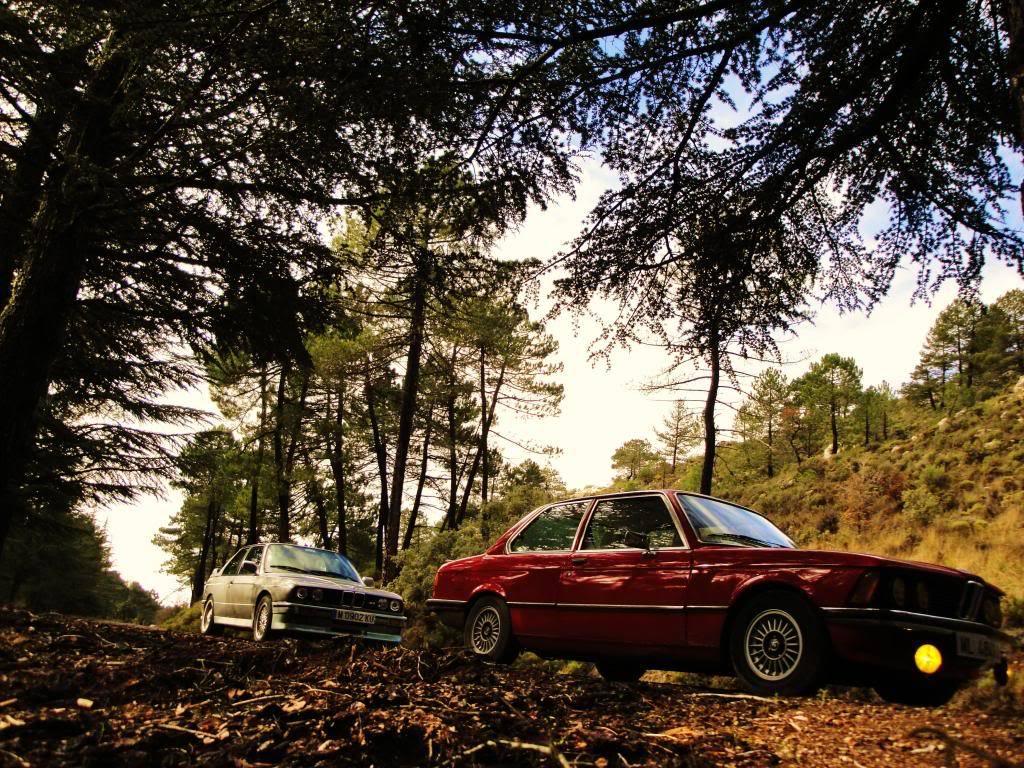 BMW 320i E21 DSC03371-copia