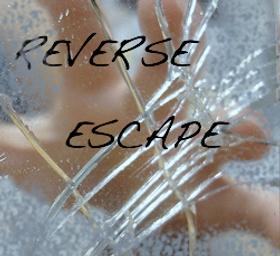 Reverse Escape 1231