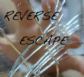 Reverse Escape Picture10-1