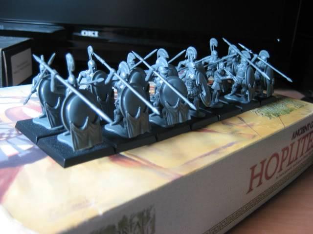 Hoplitas (Graccans) IMG_6196