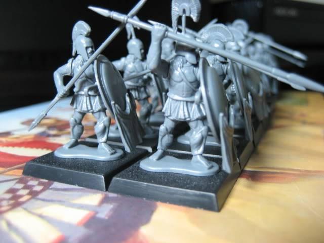 Hoplitas (Graccans) IMG_6198