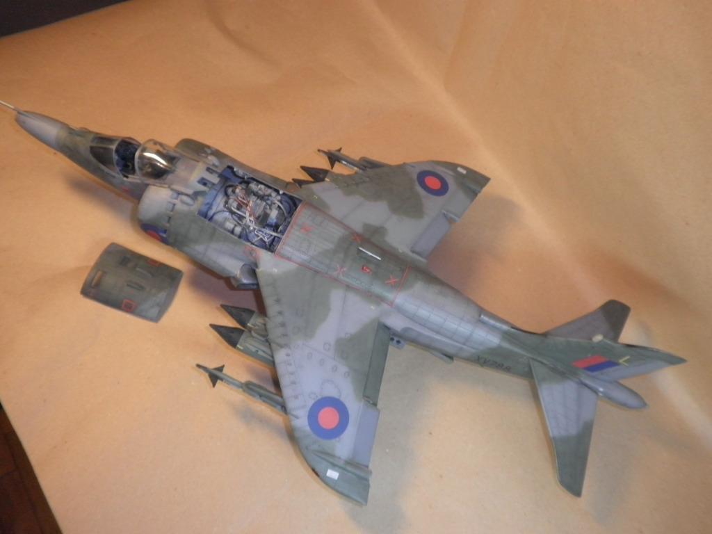 Οταν το μικιο φαινεται μεγαλο (Harriers στην 1/24) PA090037