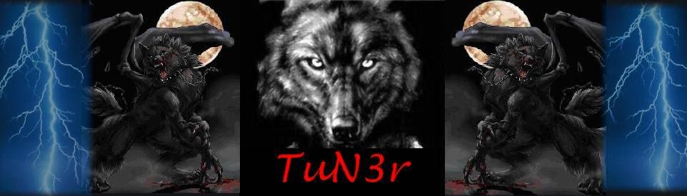 TuN3r