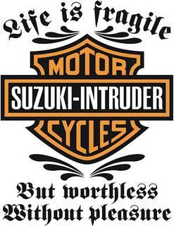 Just some pics .......... Suzuki M50 Intruderharleyinsigne
