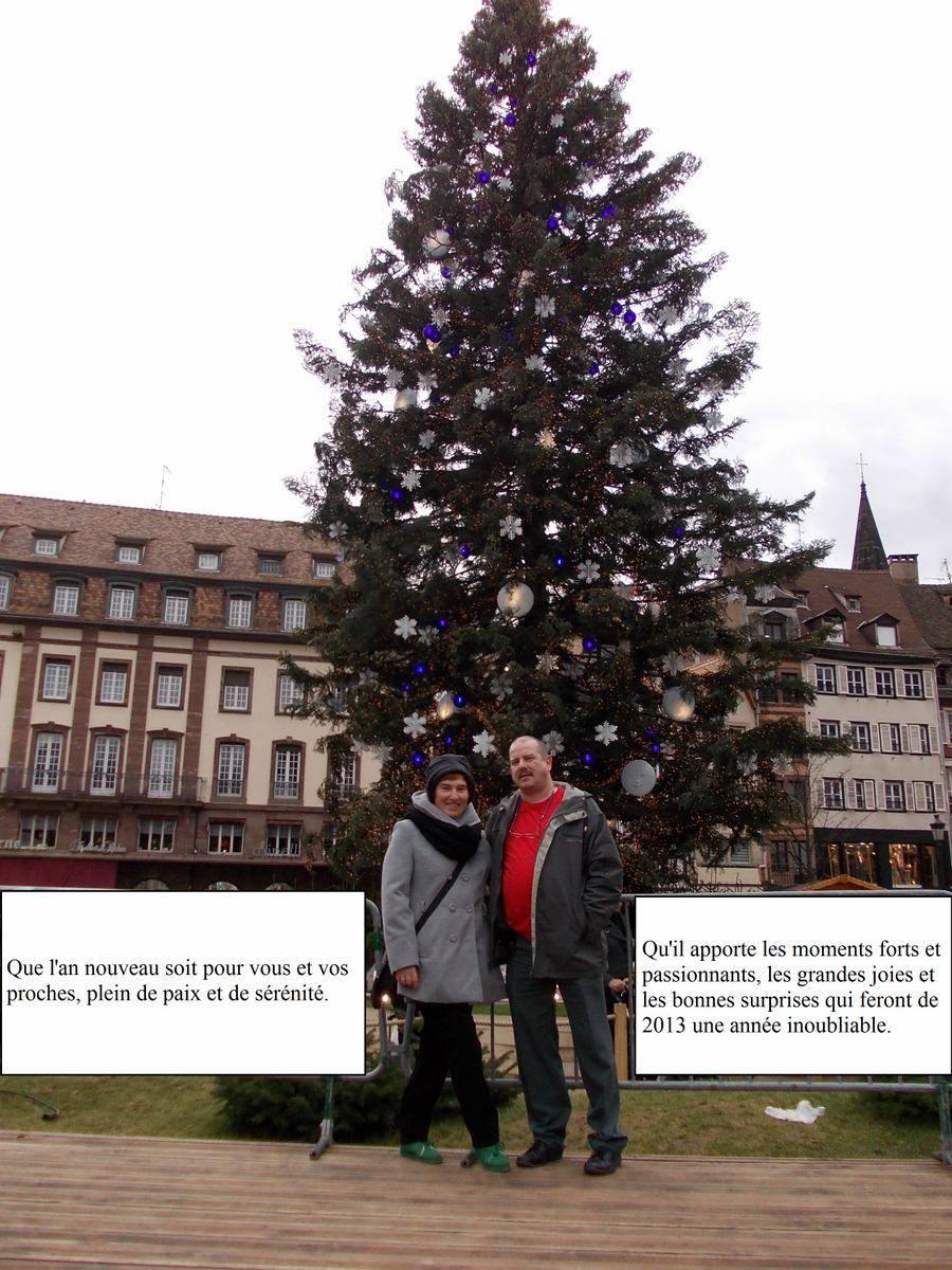 Bonnes Fêtes et Meilleurs Vœux à tous pour 2013 - Page 4 2013
