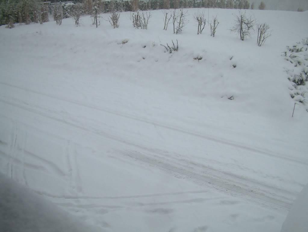 Photos de neige du coté de chez vous - Page 2 DSCF0002-3