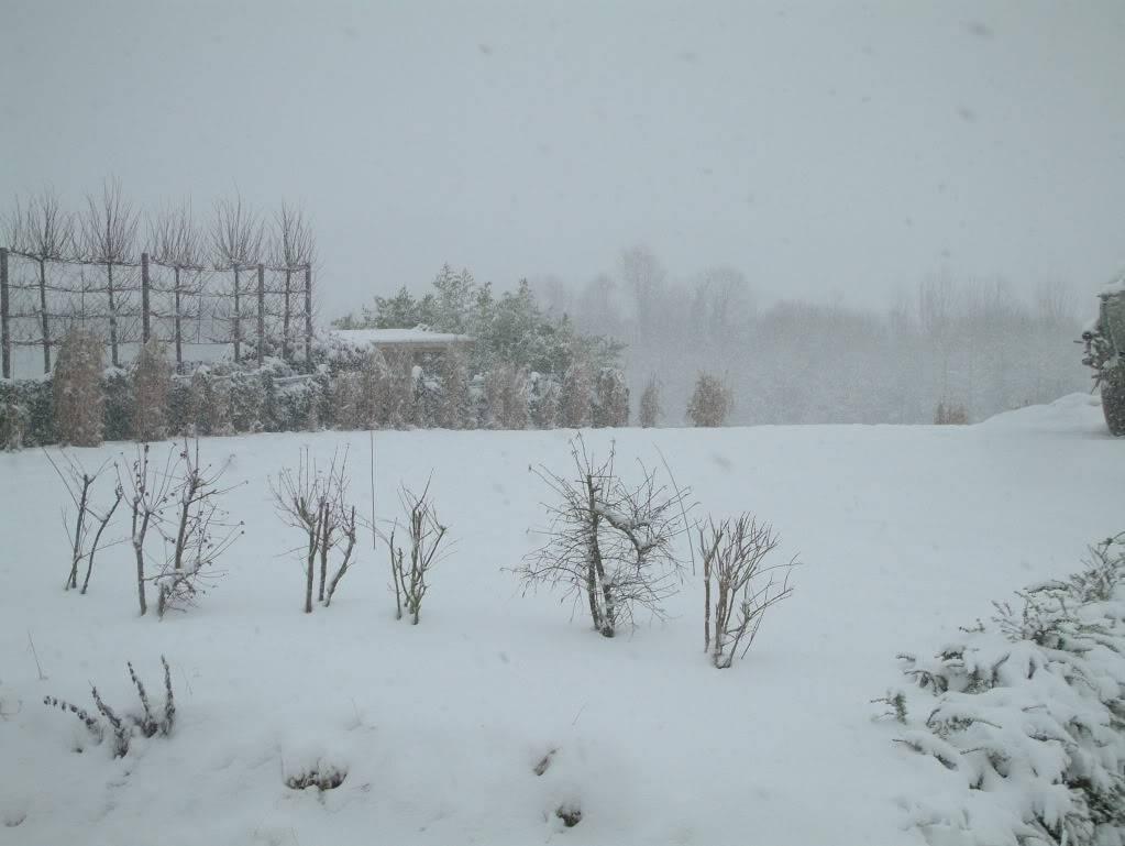 Photos de neige du coté de chez vous - Page 2 DSCF0004