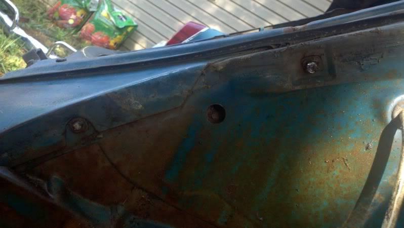 My 65 Beetle Leela 2011-04-24_17-34-13_824