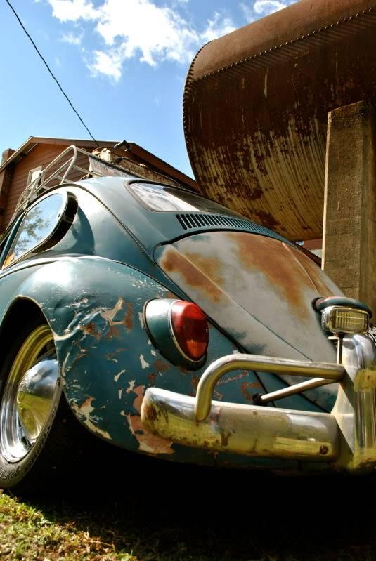 My 65 Beetle Leela - Page 8 DSC_0356