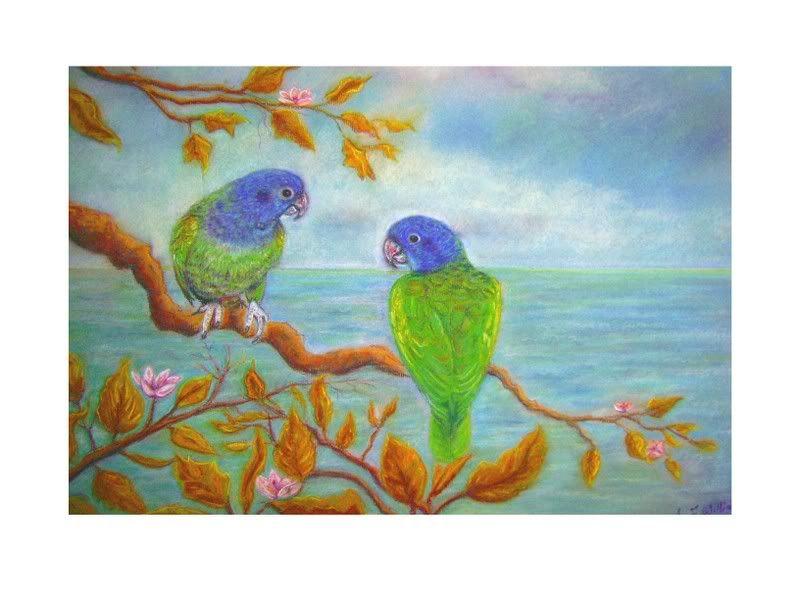 Some animal art of mine Bluepionusparrots-1