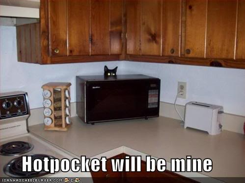 Random funny pictures! HotPocket