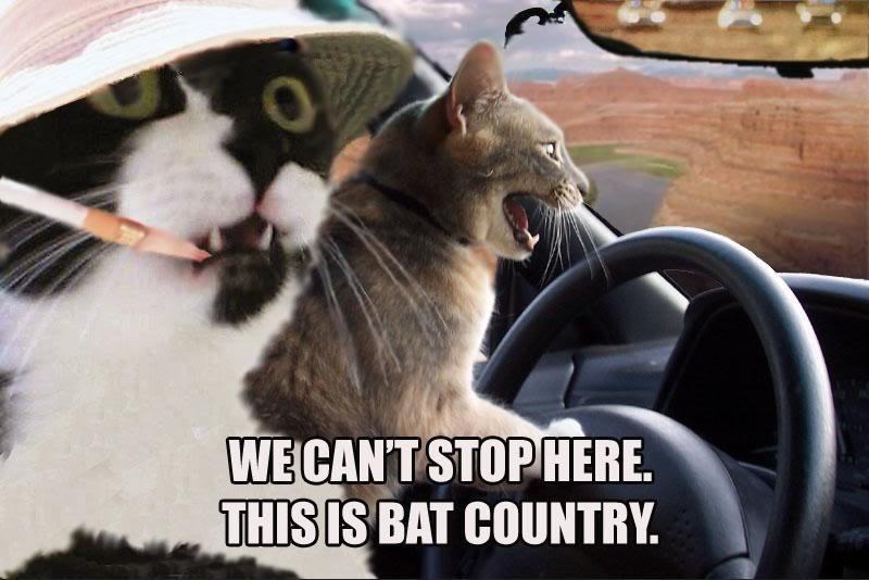 Random funny pictures! Batcountry3tvga0