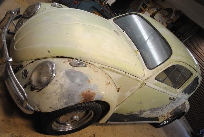 Eeva  61 Beryl Bug DSC_0265