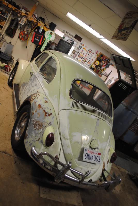 Eeva  61 Beryl Bug DSC_0282
