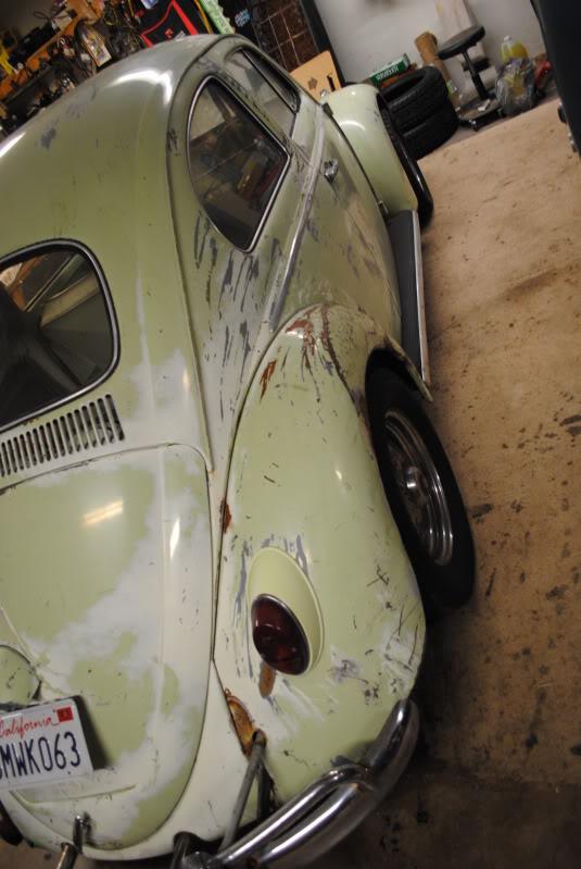 Eeva  61 Beryl Bug DSC_0289