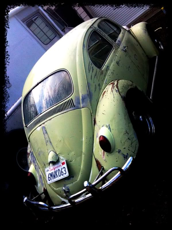 Eeva  61 Beryl Bug Photo-4