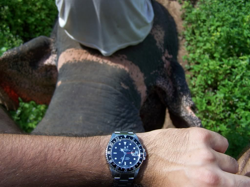 Cette montre a fait le Tour du Monde 102_1895