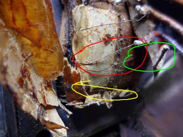 Truetone transformer interesting find. Tranformer2_zps2cf53292